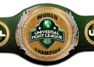 universal fight league mixed martial arts