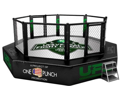 universal fight league ring