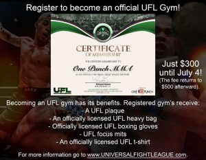 universal fight league certificate one punch