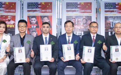 UFL China Cabinet Introduction